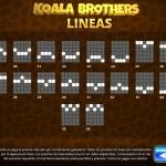 Koala lineas-2