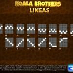 Koala lineas-3